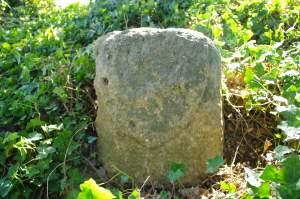 BORNE 1302-2